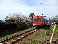 P4162018.JPG